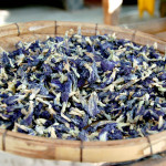 Dried flowers for dyes
