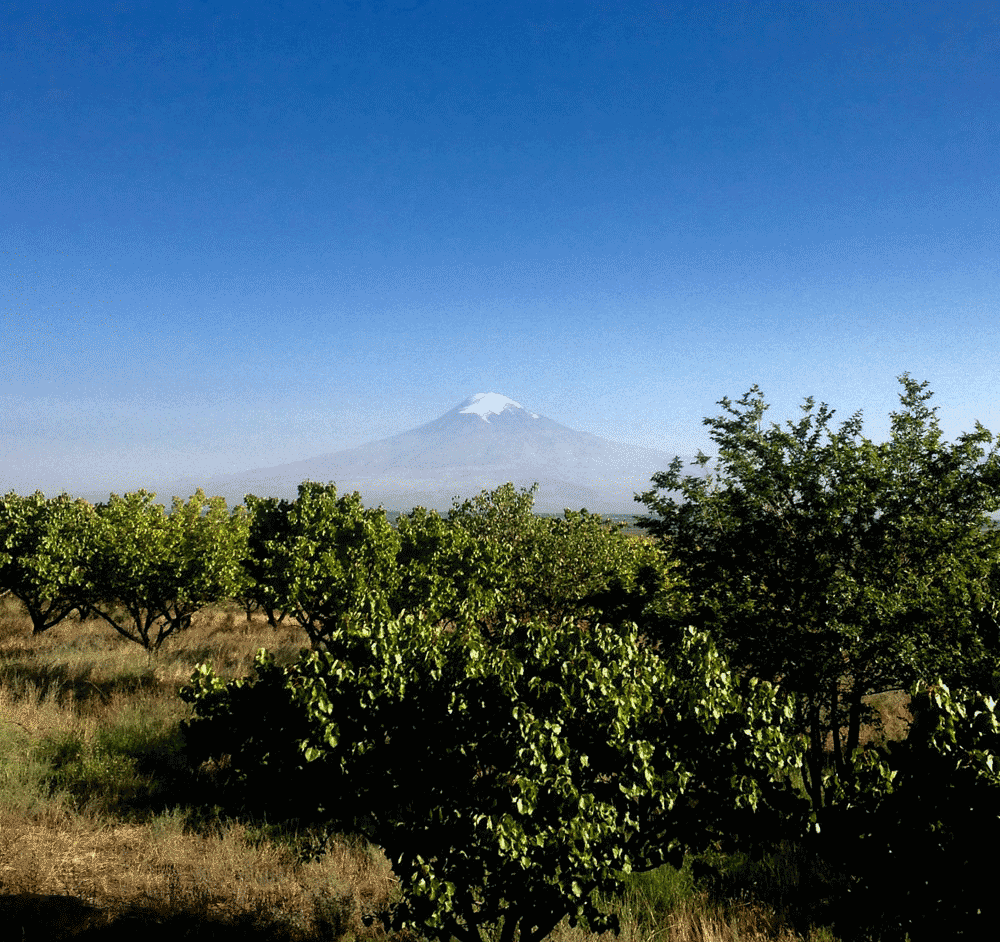 Mount Ararat from Sardarapat, Armenia