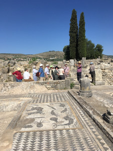 The HALI Tour group at the Roman city of Volubilis