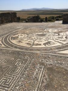 Roman mosaics at Volubilis